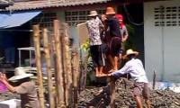 Batedores de Estacas de Banguecoque