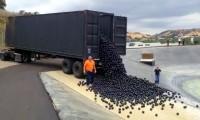 Bolas de plástico protegem reservatório em Los Angeles