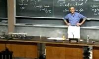 Curso de Física do MIT - Aula 14